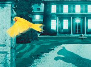 REVIEW: The Cat and Canary at Theatre Royal Windsor