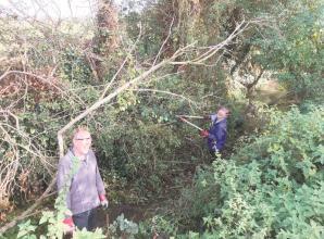 Bisham brook restored to 'former glory'