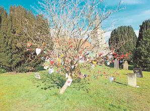 Burnham project encourages residents to create a heart for a tree remembering the lives lost to COVID-19