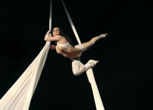 Continental Circus Berlin is coming to Ascot Racecourse