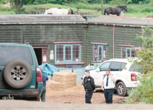 Animal sanctuary boss pleads guilty to six charges of mistreating animals