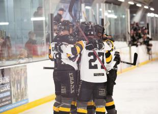 'Teamwork and determination' key to Bees' victory over Milton Keynes Lightning