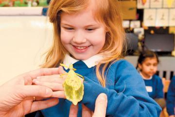 Jungle Roadshow creepy crawlies come to Cippenham Primary School
