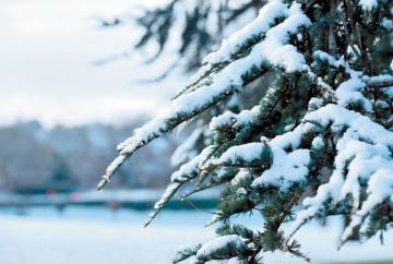 Snow and ice may cause travel disruptions tonight and tomorrow