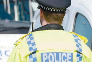 Second teenager arrested over attack on cat by youths in Burnham