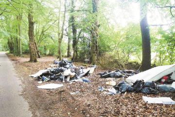 Cafe owner fined over waste dumped near Burnham Beeches