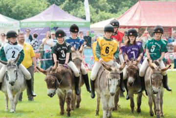 Burnham Donkey Derby on the bank holiday weekend